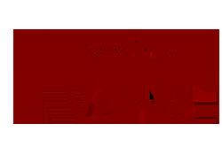 Logo Valor Unico