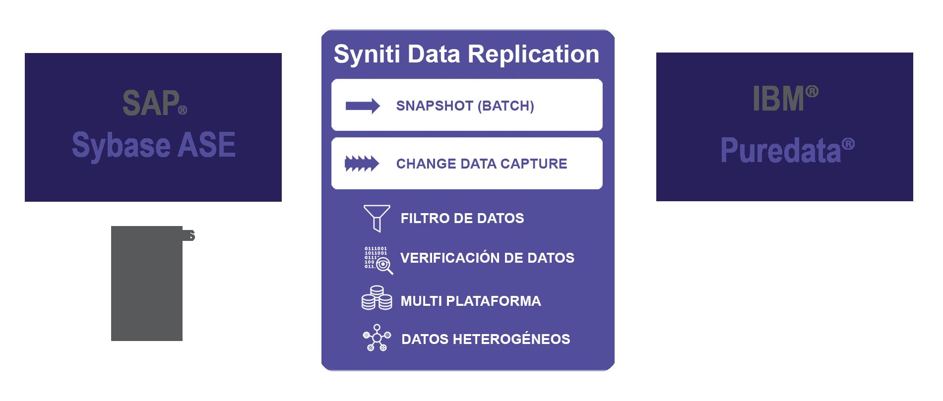 Carga de datos SAP Sybase ASE a Puredata Netezza en tiempo real